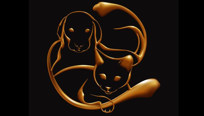 Mačke i psi su prirodni empati: Apsorbiraju negativne energije i štite vlasnika od bolesti i depresije!