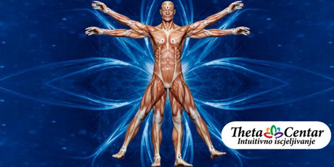 Intuitivna anatomija – ThetaHealing® tečaj