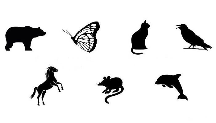 Čarobni test: U koju životinju bi se voljeli pretvoriti? Otkrijte svoju unutarnju silu!