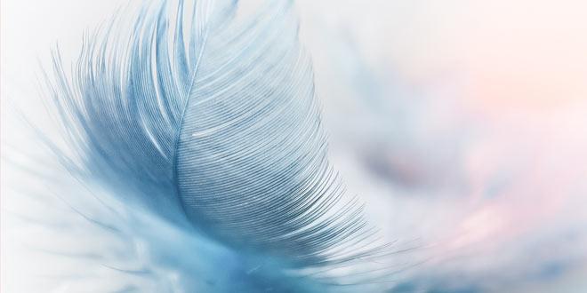 Anđeosko vodstvo - radionica