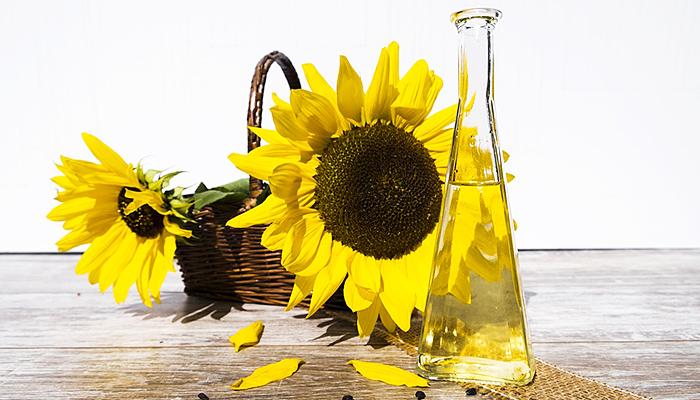 Zlatni čuvar ljudskog zdravlja: Najbolje recepture od suncokretovog ulja