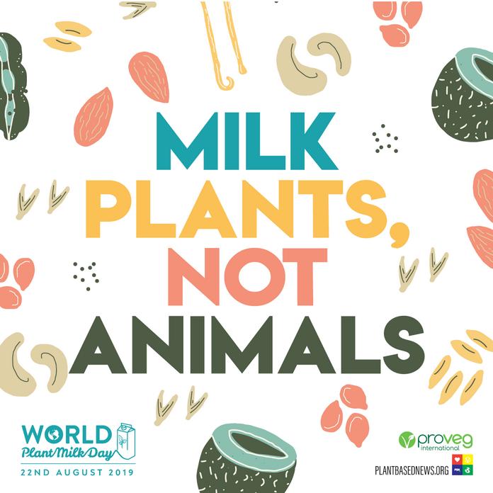 Biljnim mlijekom do održivog življenja