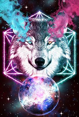 wolf 4226285 960 720