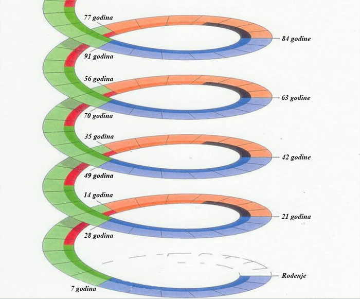 spirala 2