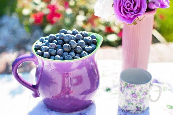 blueberries 864628 1280