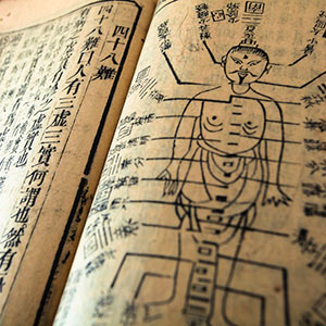 Shiatsu Study
